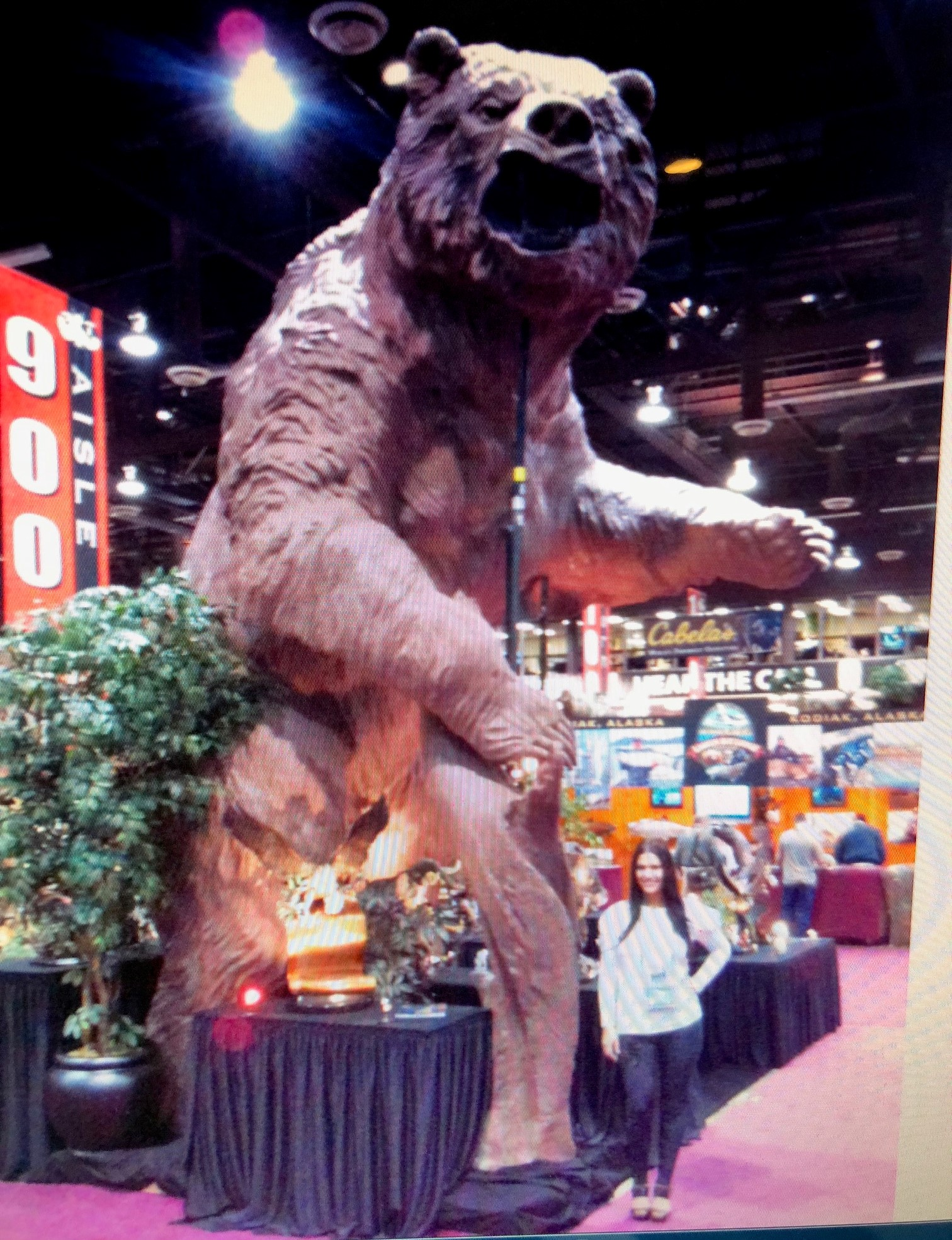 Larger Than Life Size Bear